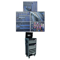 Werkstattwagen Profi Standard Maxi komplett mit 243 Werkzeugen